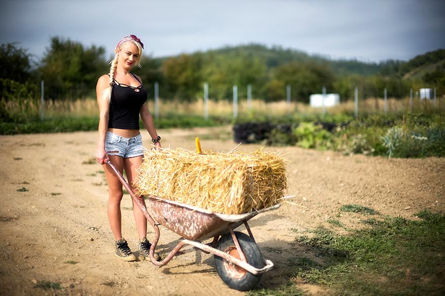 Iris mit Scheibtruhe am Gemüseraritäten Feld