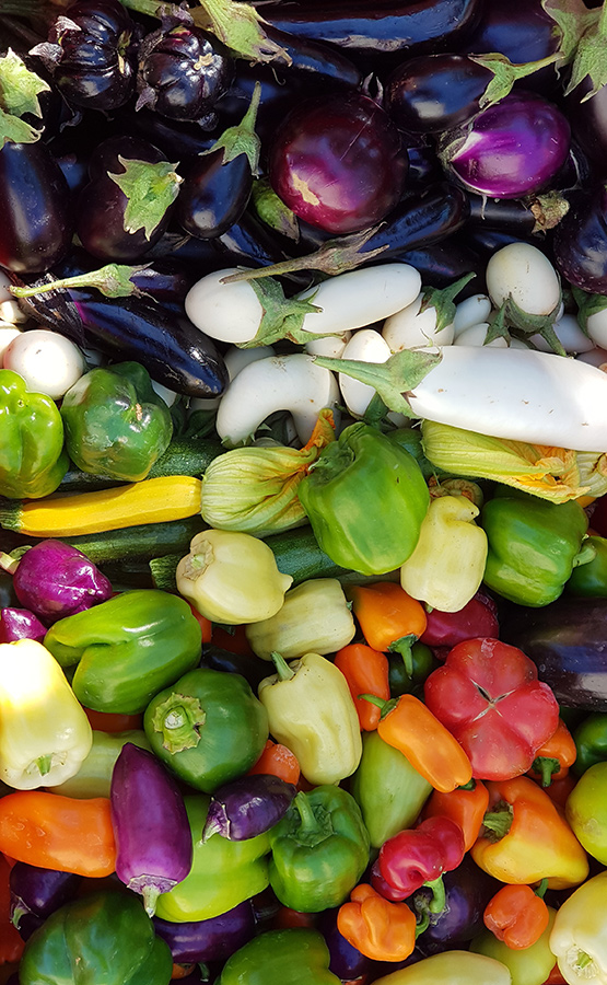 Iris Gemüseraritäten 6