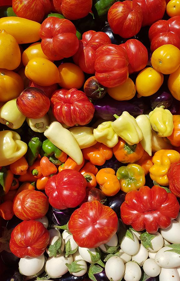Iris Gemüseraritäten 7
