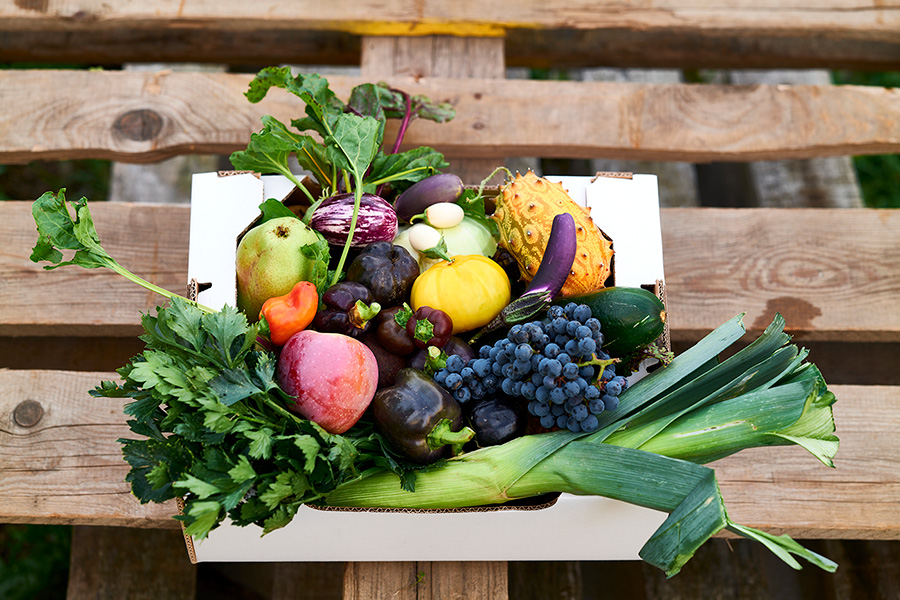 Kisterl IRiS Gemüseraritäten